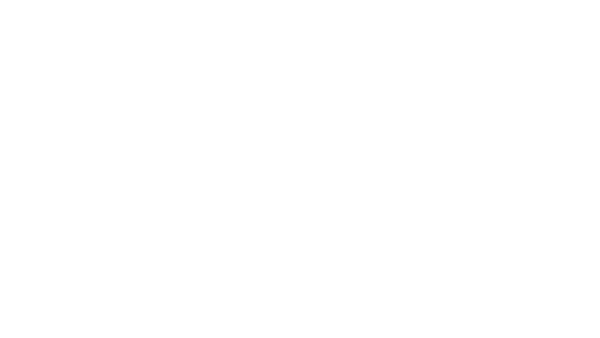 Rapiscan Systems Client